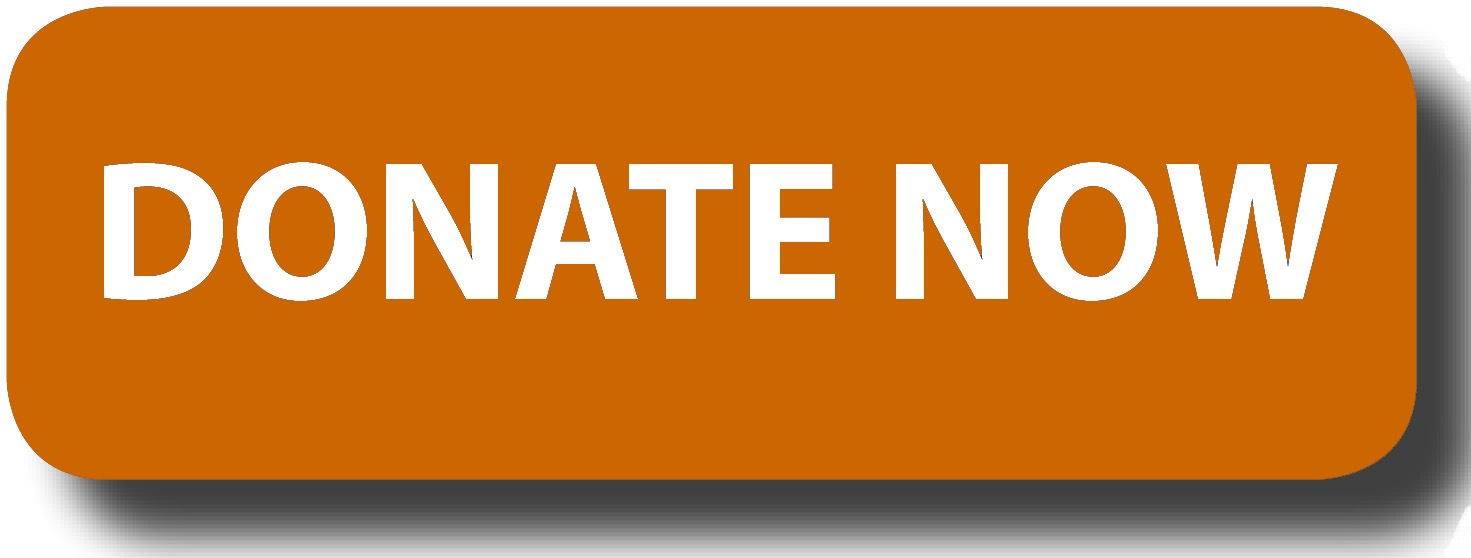 donate-button-logo-blue-rectangle1