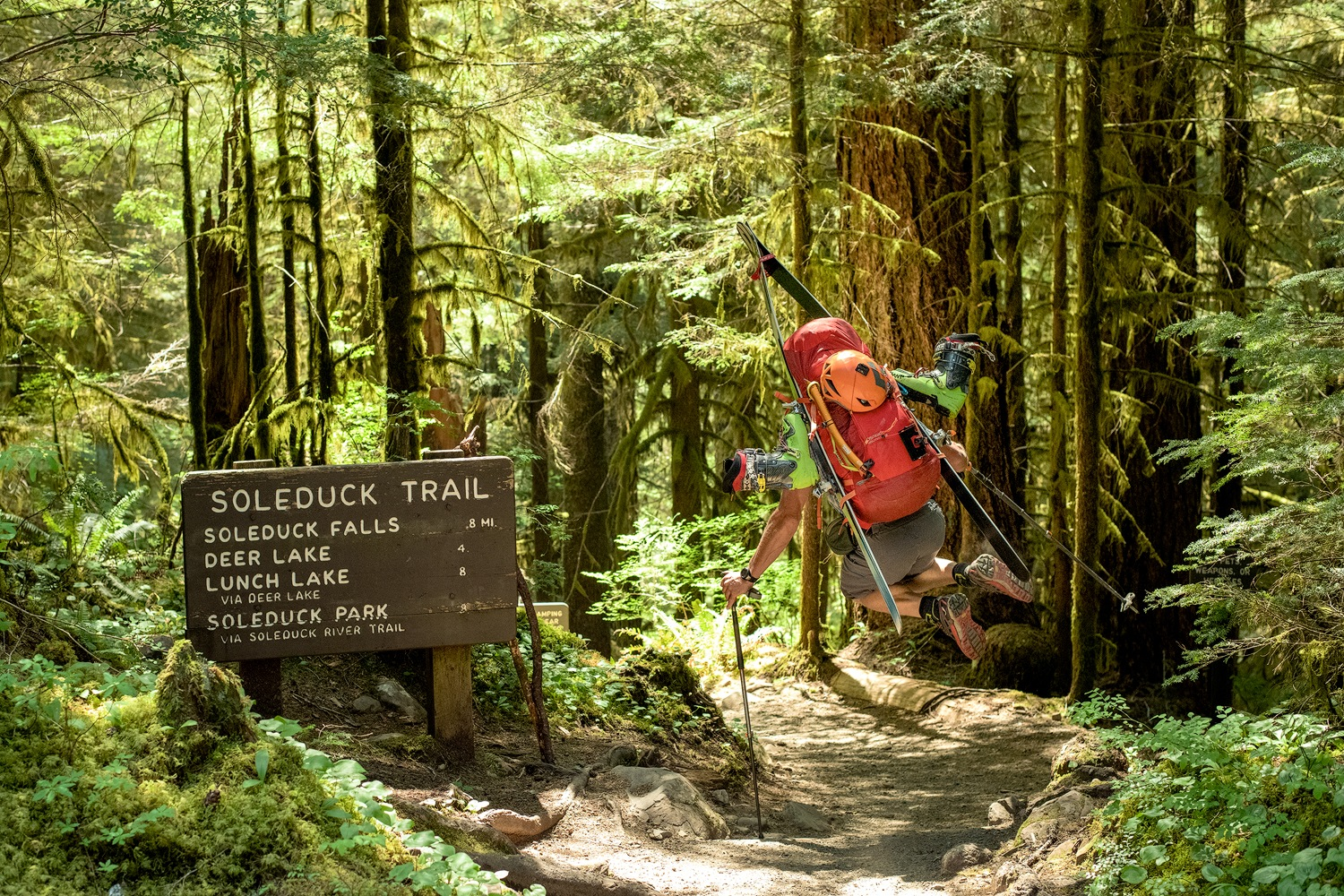 A backcountry skier with his skis on his backpack jumps in mid-air at the trailhead in the rainforest on the Olympic Peninsula